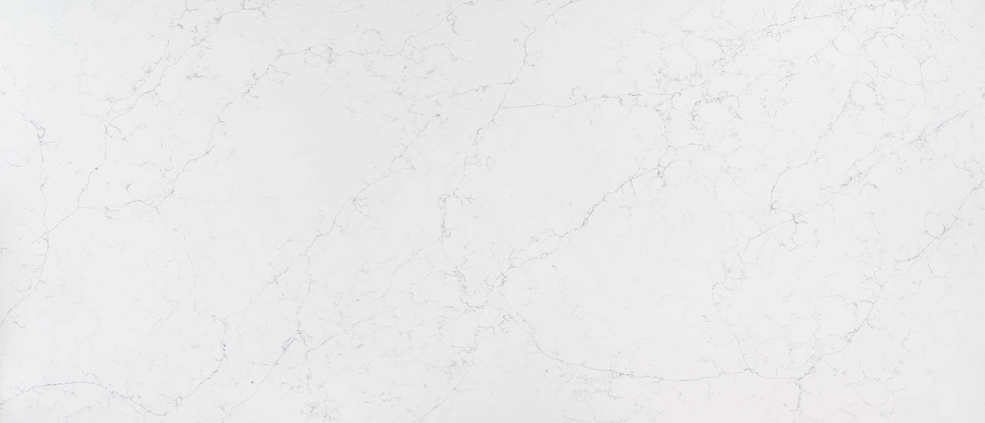 calacatta-botanica-quartz